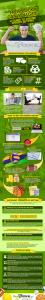 A detailed infographic about betting