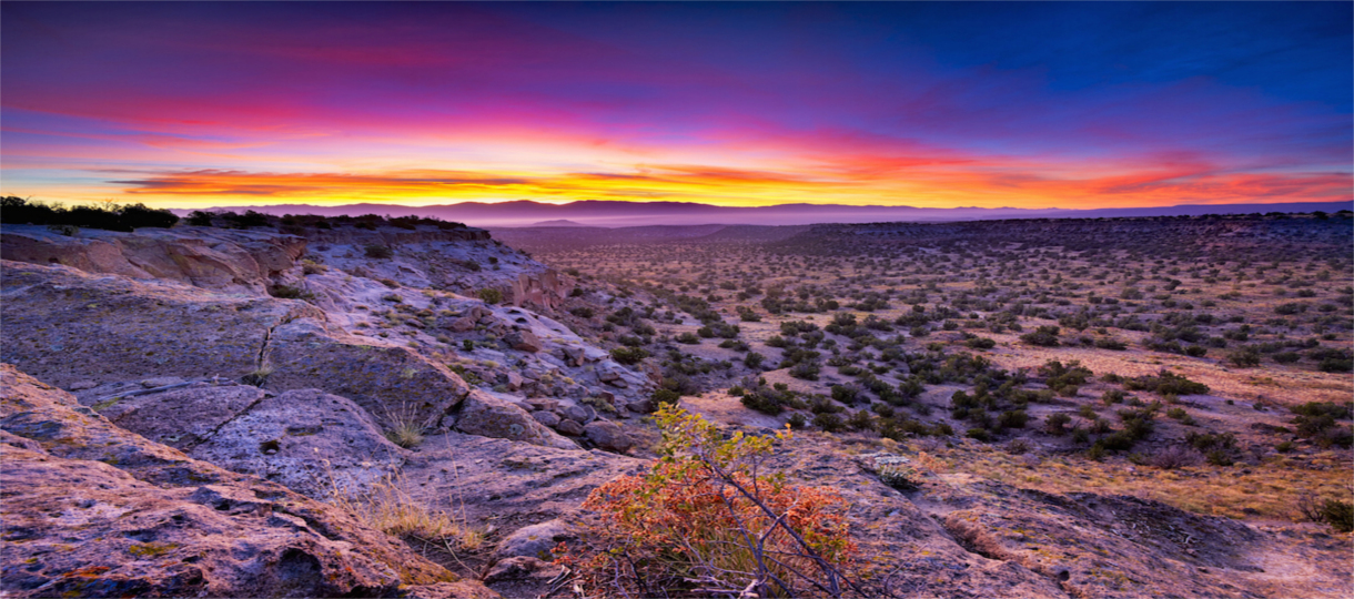 New Mexico: A Land of Enchantment for Bookies