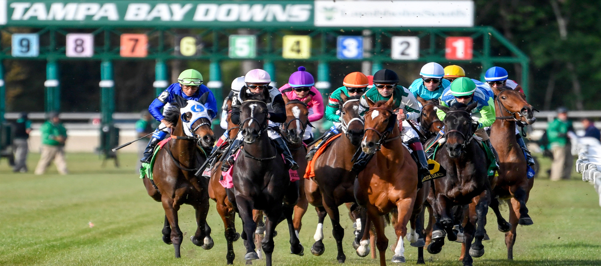 Running a Profitable Online Racebook With Pay Per Head